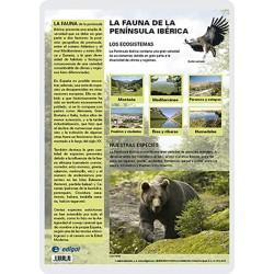 La Fauna ibèrica