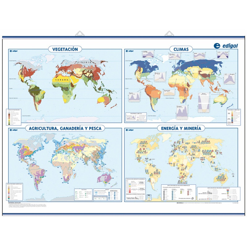 Thematic World Wall Map