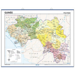 Guinea Wall Map - Physical / Political