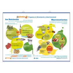 Salud - Nutrientes - Macronutrientes / Micronutrientes  Minerales - Vitaminas